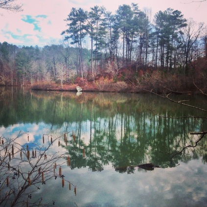 Mt. Cheaha 50, single track, trail running, 50k training, Oak Mountain State Park, Alabama, Birmingham