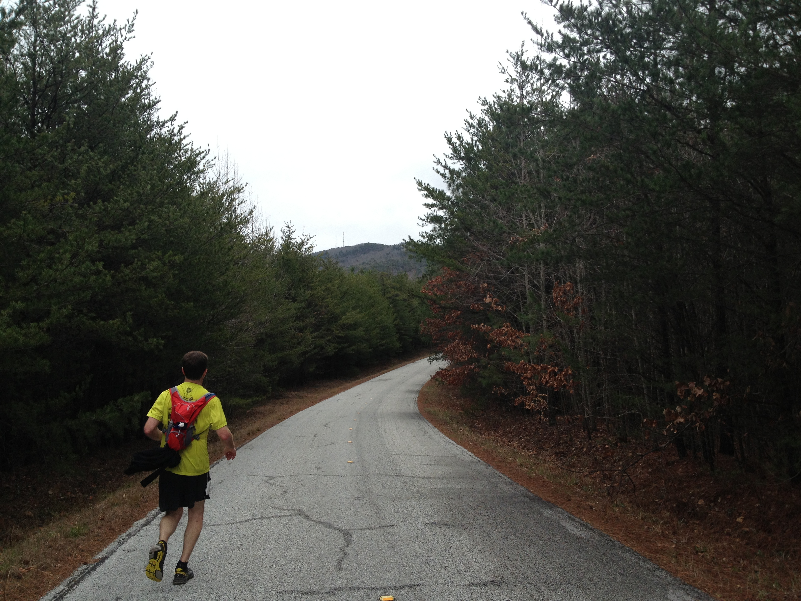 Mt. Cheaha 50k, Talladega National Forest, ultra running, trail running, ultra marathon, 50k training, Alabama