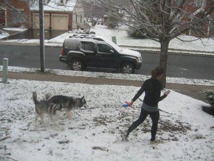 Running with dogs, running tips, Garmin, siberian husky, zen running